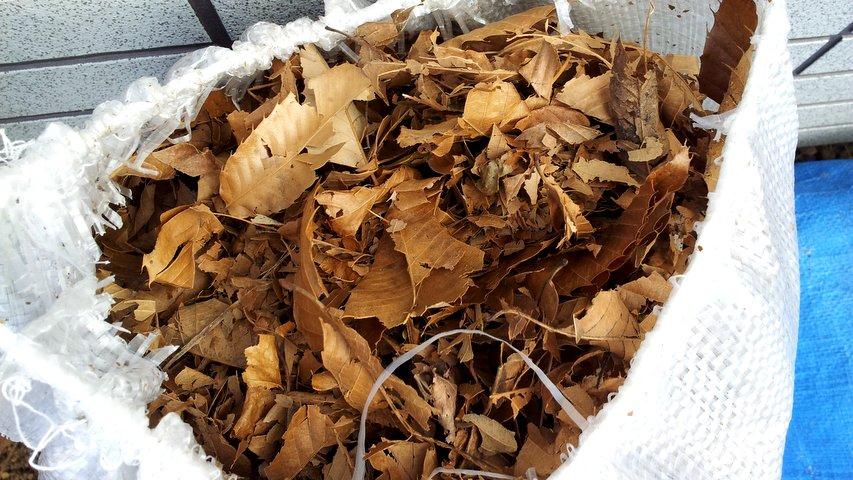 土嚢袋に回収